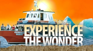 Experience the Wonder: Iceberg Quest