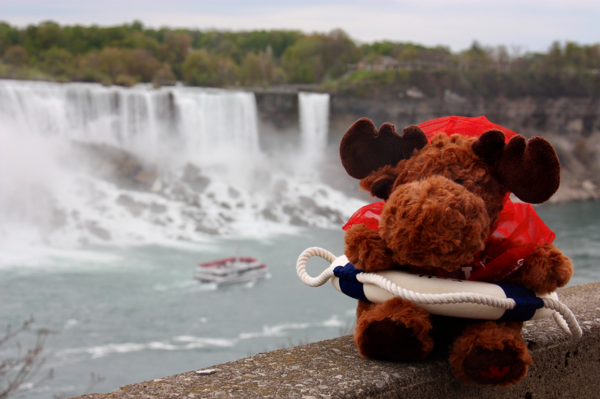 Misty at the falls